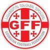 ФФГ публикует заявление о проведении футбольных турниров вне регламента