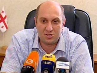 Вице-спикер Парламента Грузии: Обвинения России по поводу «Аль-каиды» - абсурд